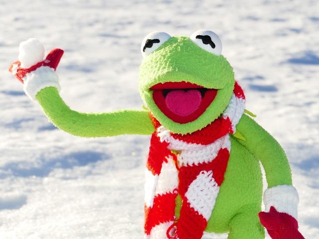 Kermit Frog Snow Ball ...