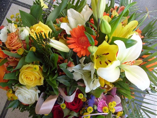 Kostenloses foto blume blumenstrau fr hling - Immagini di fiori tedeschi ...