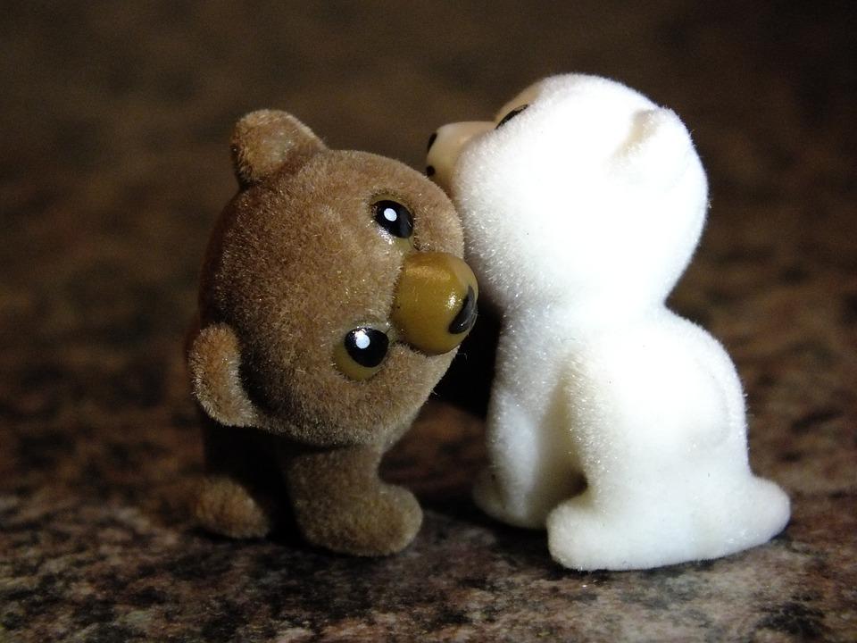 Beruang Terancam Punah