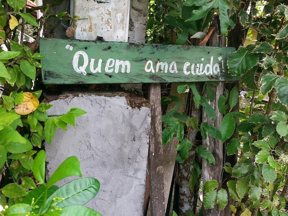 Placa Frases Sabiduría Que Ama Foto Gratis En Pixabay