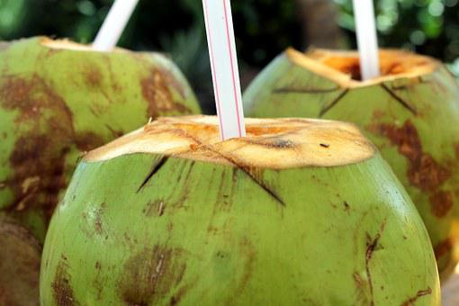 Coco Coconut Water Cocktail Drink Refreshi