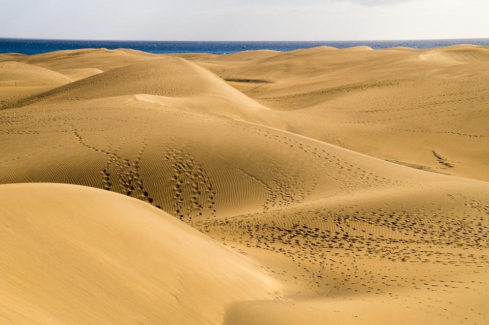 Désert, Dunes De Sable, Nature, Gran Canaria