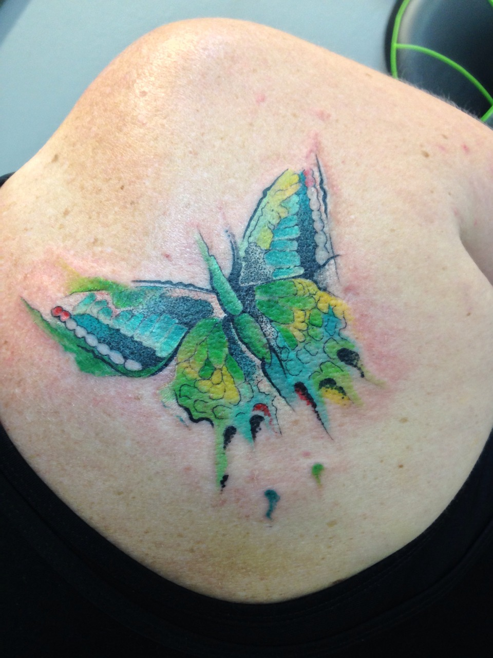 Color tattoo butterfly
