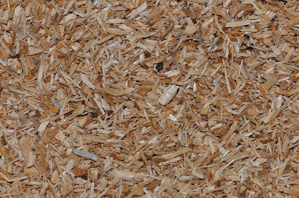 Things needed prior to raising chickens coops and