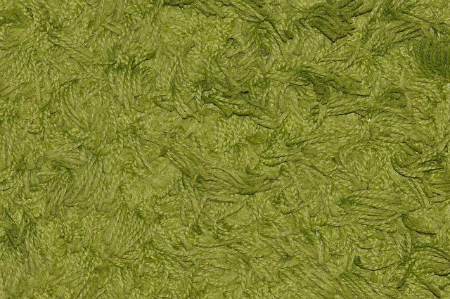 Free photo Carpet, Green, Synthetic Fiber  Free Image on