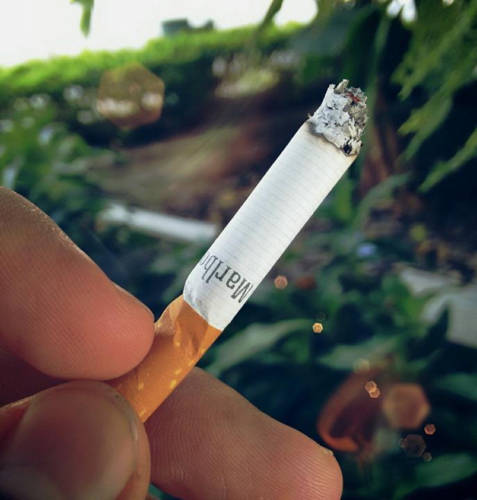 Najlepšie hodnotené fajčenie videá