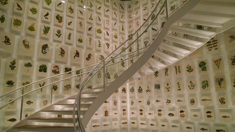 무료 사진: 계단, 구조, 건물, 디자인, 건축물, 집, 벽, 현대 ...