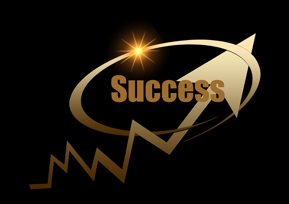 free illustration  success  profit  successful