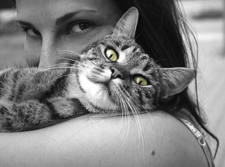 Animals, Cat, Girl, Happiness, Emotions