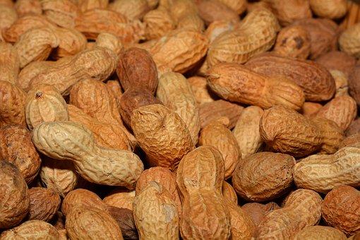 Peanuts, Healthy, Shell, Delicious