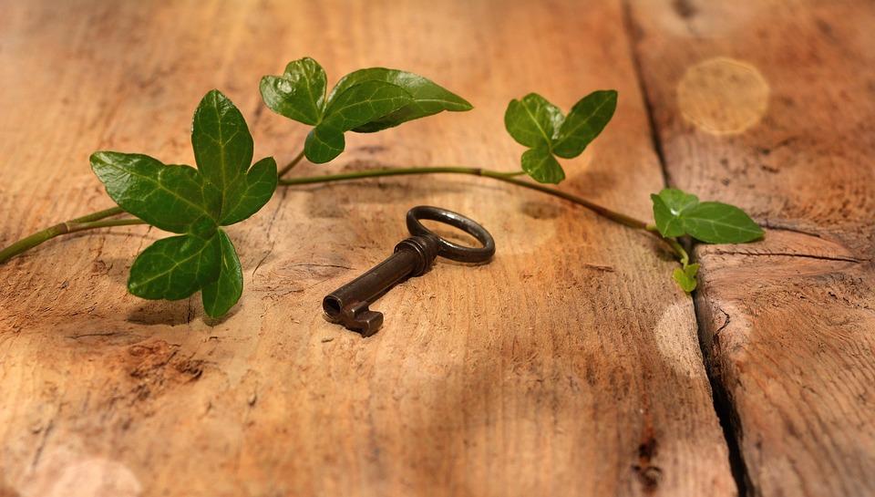 Sleutel Oude Ivy Houten · Gratis foto op Pixabay