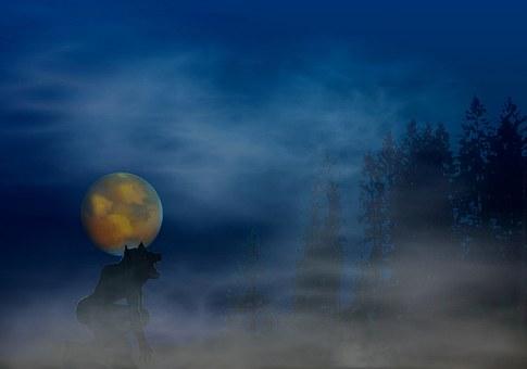Werwolf, Fantasie, Phantasie, Abstrakt