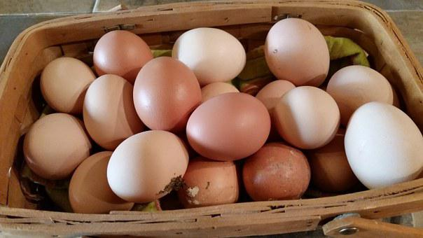 Farm Fresh, Eggs, Farm Fresh Eggs, Food