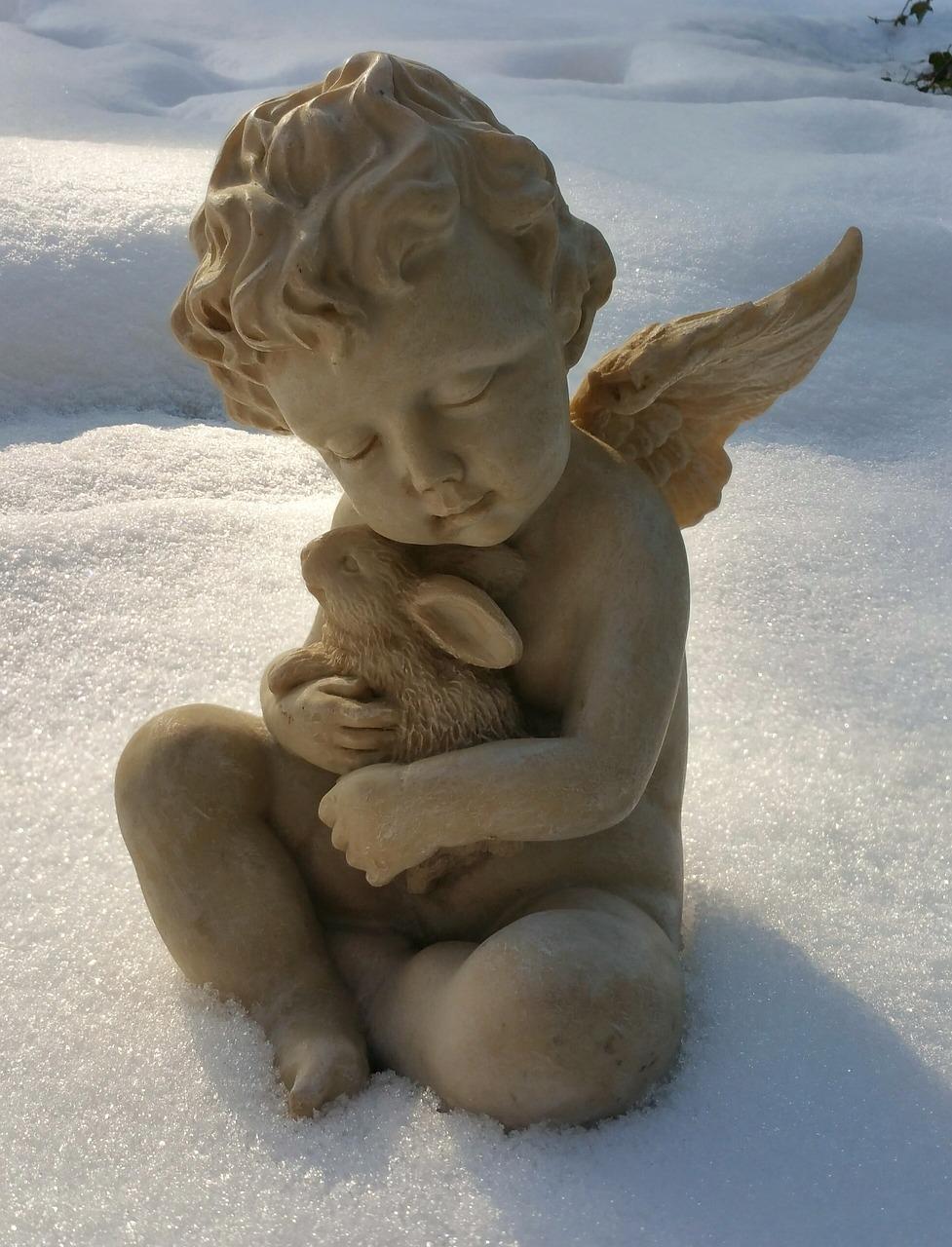 учащийся печальный ангел фото симферополь лето