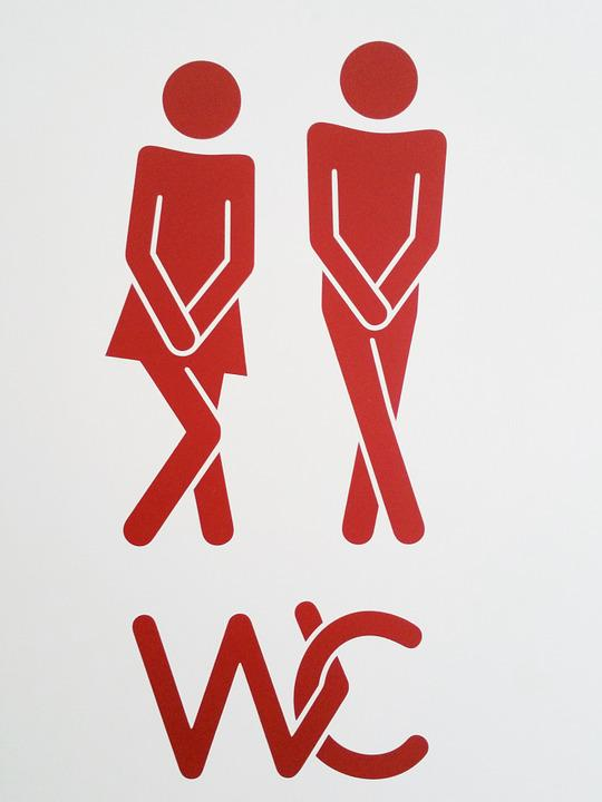 Pair, Wc, Toilet, Man, Woman, Characters, Sticker