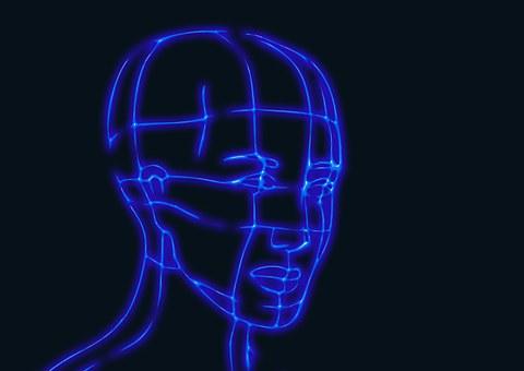 Kopf, Drahtmodell Grafiken, Modell, 3D