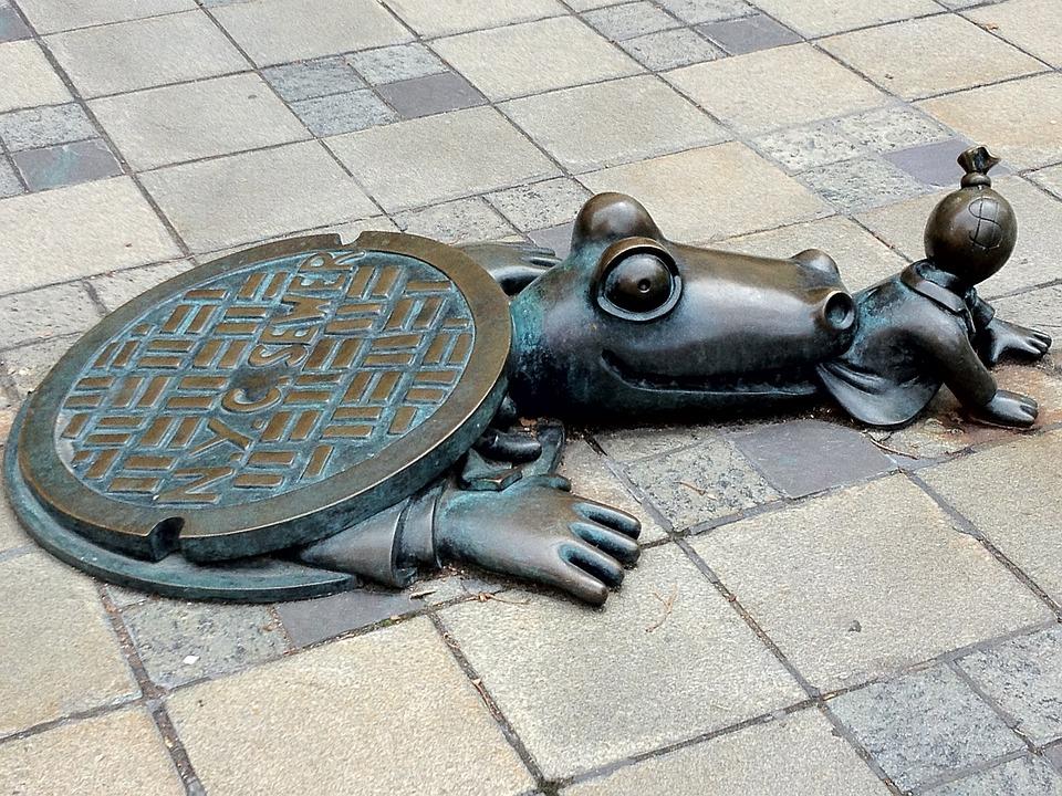 Image result for Sewer Alligator