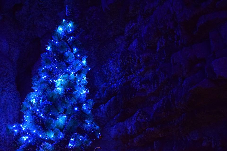 Kostenloses Foto: Weihnachten, Weihnachtsbaum, Blau
