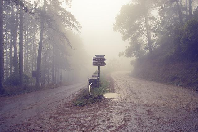 Italy, Tuscany, Road, Fog, Misty, Autumn, Foggy