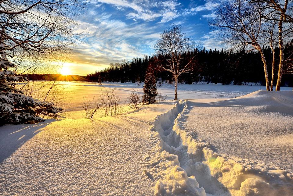 Paesaggio Invernale, Tramonto, Freddo, Neve, Alberi
