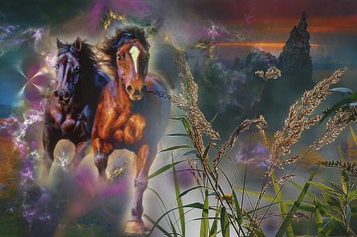 Horses, Galop, Animals, Escape, Horror