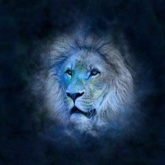 Horoscope Astrology Zodiac Lion Icon
