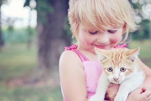 Girl, Kitten, Pet, Animal, Child, Cute