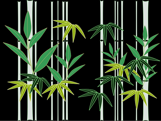 bamboo japan japanese style free vector graphic on pixabay bamboo japan japanese style free