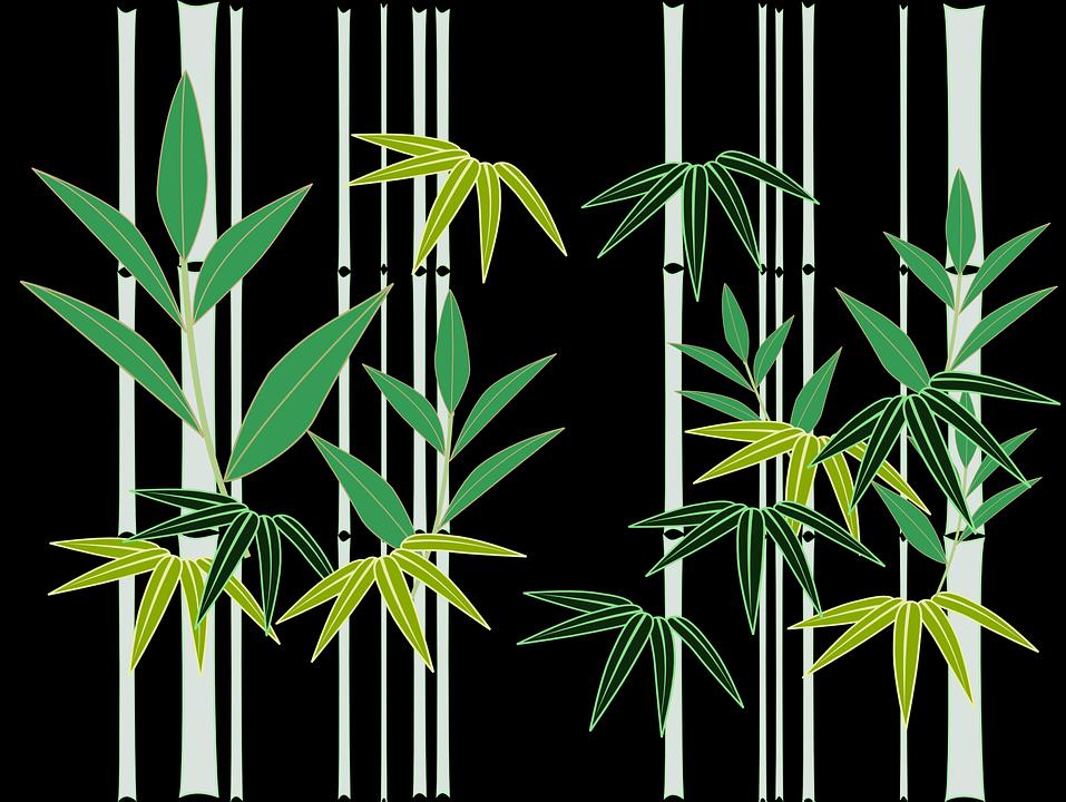 Bambus Japan Japansk Stil Gratis Vektorgrafikk Pa Pixabay