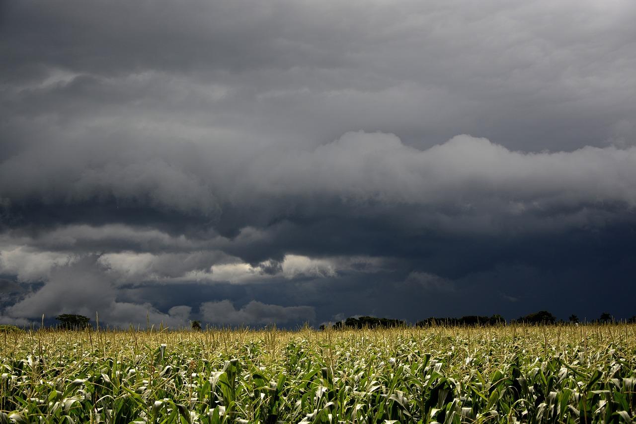 Облака дождевые картинки