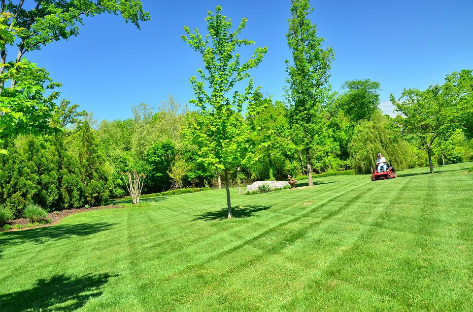 Free photo lawn care lawn maintenance free image on for Garden care maintenance