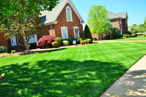 Lawn Care, Lawn Maintenance
