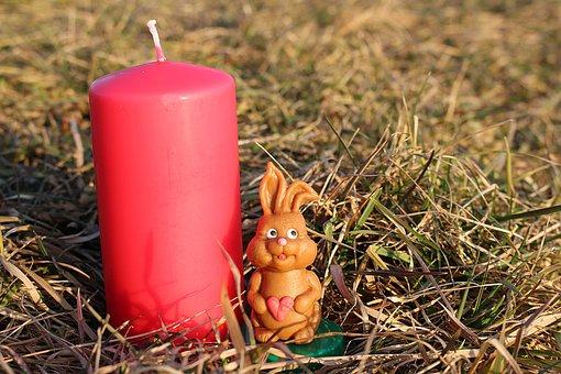 easter-bunny-643734__340.jpg