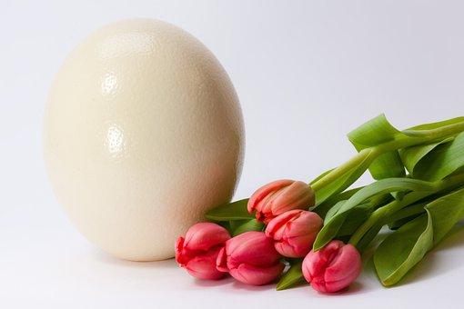 Huevo, Primavera, Frühlingsanfang