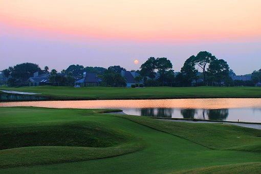 ゴルフ コースに沈む夕日, 草, ゴルフ, コース, 夏