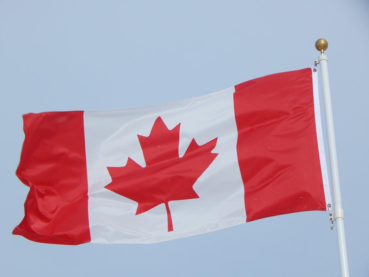 канадский флаг фото морковь