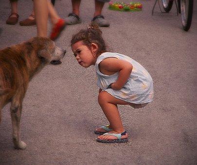 子, かわいい, 子ども, 小児期, 人, 学習, 探している, 若いです