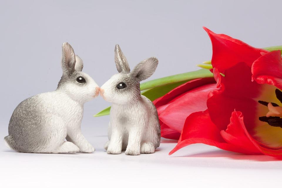 Easter Bunny, Kiss, Spring, Frühlingsanfang