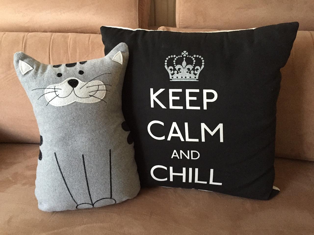 Calm a stressed cat