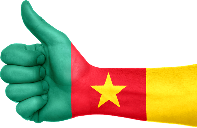 Cameroon Flag Image