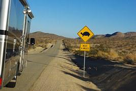 Sign, Turtle, Back Road, Rv, Road