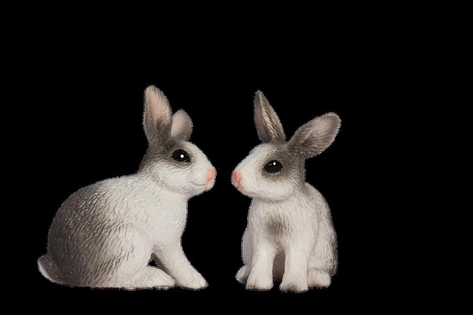 Free photo: Easter Bunny, Spring - Free Image on Pixabay ...
