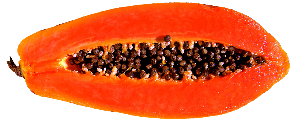 fruit papaya free image on pixabay fruit papaya free image on pixabay