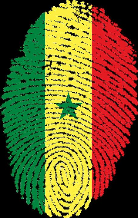 Hervorragend Illustration gratuite: Sénégal, Drapeau - Image gratuite sur  OL21