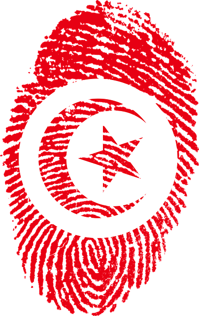 Tunisia Flag Fingerprint Country 654165 on computer symbols