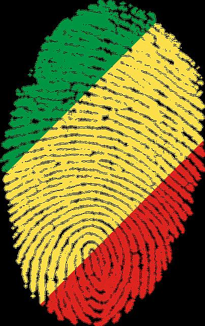 congo flag fingerprint 183 free image on pixabay
