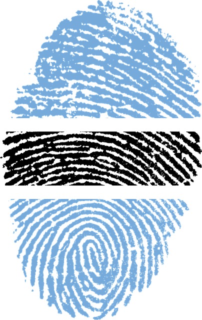 free illustration  botswana  flag  fingerprint - free image on pixabay