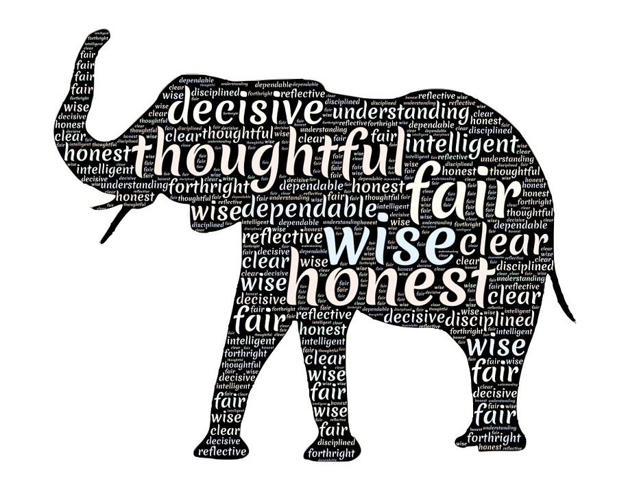 Éléphant animal totem qualités - image gratuite sur pixabay