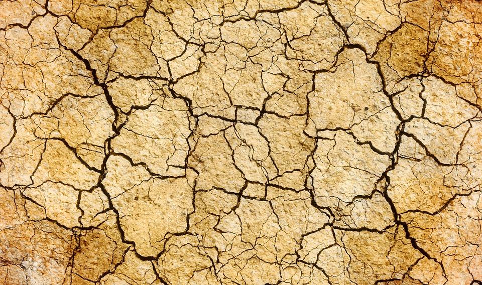 Risse Dürre Erde Land Oberfläche Geknackt Umwelt