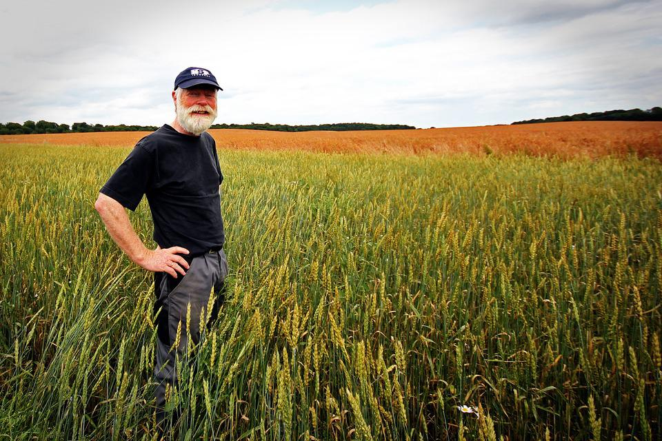 Свыше 11 тысяч человек в Марий Эл имеют право на «сельскую» надбавку к пенсии